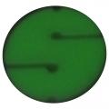 Cookie fluoreszierend (nondirectional Marker)